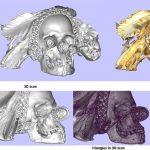 3D scan van een voorouderschedel gemaakt in het depot van het Wereldmuseum.Copyright foto Frederic Dehaen.